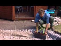 Gartenteich anlegen - Video: Wie Sie einen Gartenteich selber bauen Schritt für Schritt - YouTube