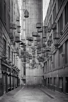 fiore-rosso: the forgotten songs // installation by michael thomas hill. sydney, australia.