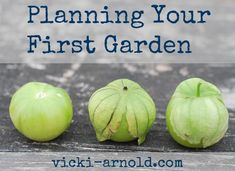 How to plan my first garden.