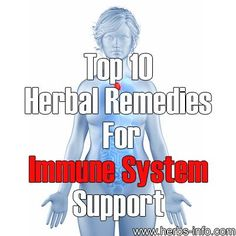 Top 10 Herbal Remedies for Immune Boosting Support
