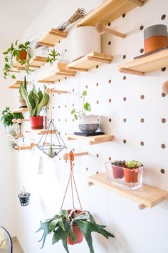 Peg Board Shelves, Peg Board Walls, Modern Floating Shelves, Modern Shelving, Wooden Pegboard, Peg Wall, Shore Break, Interior Design Singapore, Beach House Kitchens