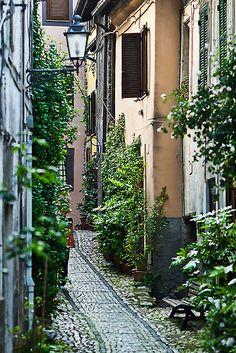Alley Gardens in Anagni Italy. by Warren. A. Williams, Anagni, province of Frosinone , Lazio region Italy