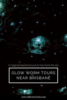 Mount Tamborine glow worm cave tours a truly magical, find out why they're a must see while you're in Brisbane! Australia Honeymoon, Australia Travel Guide, Glow Worm Cave, Top Places To Travel, Cave Tours, Fishing Charters, Bucket List Destinations, New Zealand Travel, Water Activities