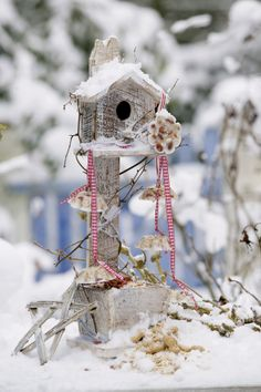 A feast for the birds - winter feeding - Porch Country