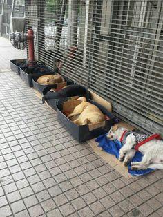 Esperan a salida del Metro