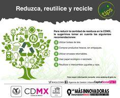 Ponga en práctica las siguientes recomendaciones: reduzca, recicle y reutilice #EcoTips