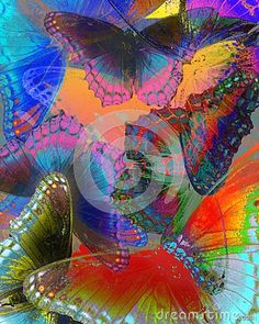 Multi layered and colored butterflies on an old grunge background