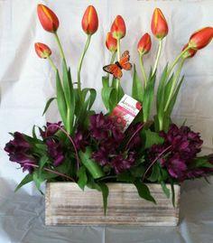 A unique design with bright tulips and alstroemerias ,surprise Her with this original design. $69.99