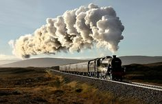 steam not smog i hope Train Tracks, Train Rides, Old Steam Train, Steam Railway, Train Art, Old Trains, Train Pictures, Train Engines, Train Journey