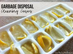 Homemade garbage disposal cleaning cubes made with lemon peels and vinegar. Genius! These smell so good and work great!