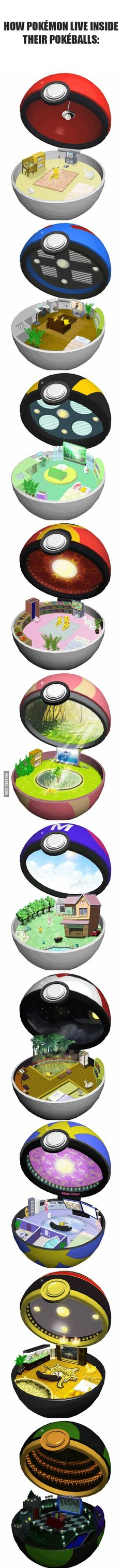 How Pokemon live inside their pokeballs This.