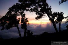 Hermosa vista desde el Cerro verde.
