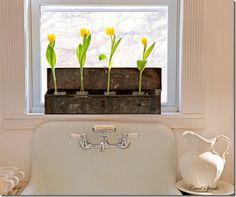 If only I had a farmhouse sink/washbasin