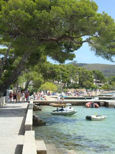 Pine Walk, Puerto Pollensa, one of my favourite places with memories of lots of lovely family holidays