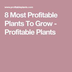8 Most Profitable Plants To Grow - Profitable Plants