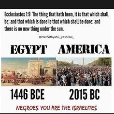 egypt vs america