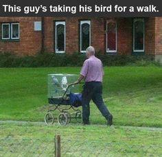 Nice pet parent