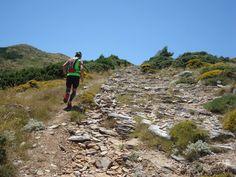 Trail running on Pentelis Mountain. Athens, Greece.
