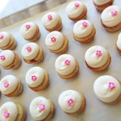 Happy Spring! Beautiful mini Cherry Blossom cupcakes by Georgetown Cupcake. http://www.georgetowncupcake.com