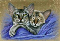 Siamese Cosy Together  Irina Garmashova Cats