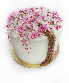"""У кого нибудь так бывает!? Вы не поверите я перепутала месяц и изготовила торт в назначенный день, но на месяц раньше. В связи с этим торт свободен, """"королевский"""" с четырьмя вкусами: шоколад, орехи, изюм и мак, весом 2,5 кг. Торт продан! #тортбезмастикикараганда #торткараганда #тортназаказкараганда #имбирныепряникикараганда #пряникикараганда #пряникиназаказкараганда #козульныепряникикараганда #караганда #cakekaraganda #candybarkaraganda #karaganda #cakeolegra #karaganda"""