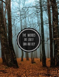 the woods are lovely, dark, & deep