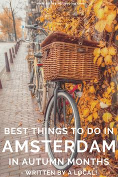 Amsterdam Travel: A Local's Guide to Visiting Amsterdam in Autumn Amsterdam Travel Guide, Europe Travel Guide, Europe Destinations, Travel Guides, Travel Abroad, Budget Travel, Outfits Winter, Outfits Spring, Amsterdam Things To Do In
