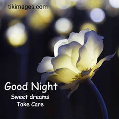100+ romantic good night images FREE DOWNLOAD for whatsapp Good Night Friends, Good Night Wishes, Good Night Sweet Dreams, Good Morning Good Night, Good Night Quotes, Day For Night, New Good Night Images, Romantic Good Night Image, Good Morning Images Flowers