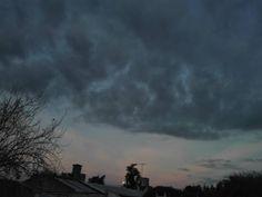 Querido desastre, he dejado de caminar, sólo voy a dejar que el viento me arrastre, en la dirección que crea conveniente. No voy a mostrar fuerza en contra, sólo seré un pétalo de una flor desecha, que volará por el mundo marchitandose... Miércoles 10 de abril de 2017 #photography #sunset #moonlight http://tipsrazzi.com/ipost/1511960236290095178/?code=BT7j9L-ljhK