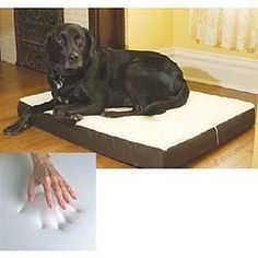 "Large Dog Bed Memory Foam Pet Beds 26"" x 36"" by Dog Bed, http://www.amazon.com/dp/B004Y6E8VS/ref=cm_sw_r_pi_dp_9kh-qb1WW69EC"