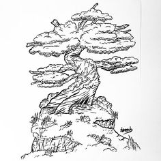 Sorry I'm late : Day 14 #INKTober2016  A tree for the theme 'tree' 🍃  #art #design #graphicdesign #draw #painting #paint #awesome #artwork #artist #amazing #drawing #beautiful #blackandwhite #inktober #peace #peacefull #nature #sweet #pretty #tree #japan #japanese #bonsai #trees #naturelovers #naturedrawing #relax #relaxing #peaceandlove