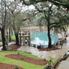 """Radium Springs is known as one of the """"Seven Natural Wonders of Georgia"""": the largest natural spring in GA. The water contains trace sources of radium and the temperature is 68 degrees year round. A casino was built overlooking the springs in the 1920s and it was a popular spa & resort. Northerners on their way by train to Florida often stopped to swim in the springs. The casino was severely damaged when the Flint river flooded in 1994, & again in 1998, & was demolished in 2003."""