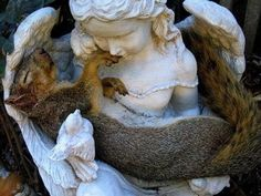 Squirrel sleeping in angel arms.