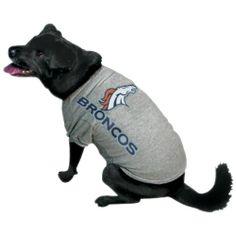 Oklahoma City Thunder Ash Logo Pet T-shirt 477f0b883