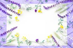 Decoration of flowers on white paper ove. Displaying Collections, Purple Backgrounds, Vector Photo, White Paper, Free Photos, Floral, Flowers, Projects, Flower Decoration