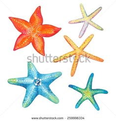 Collection of starfish watercolor, vector illustration. - stock vector