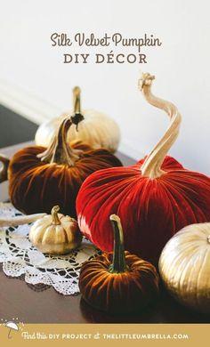 DIY - Whimsical Silk Velvet Pumpkin Décor