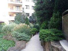 Rooms For Rent, Sidewalk, Park, Building, Plants, Beautiful, Side Walkway, Buildings, Sidewalks