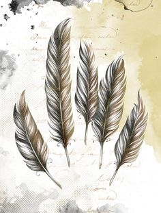 Beautiful poster for house decoration  feathers by LuckyPaperGoods, $12.00