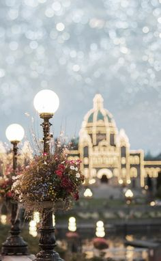 Fairy lights in Canada.