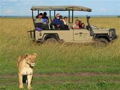 African safari!!!