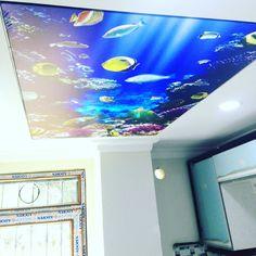 Gergi Tavan Digital Baskı Yüksek çözünürlükte çekilmiş istediğiniz görseli yapabiliriz yapiger.com