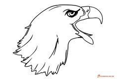 Screaming eagle head image