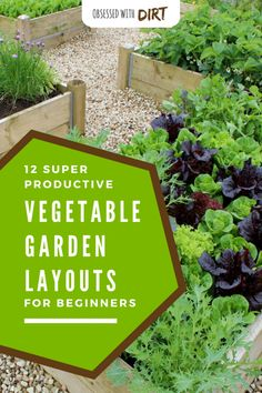 Designing the perfect vegetable garden layout isn't easy. There are so many things to consider! Your vegetables will need a lot of sun, water, nutri… - All For Garden Gardening For Beginners, Gardening Tips, Container Gardening, Fenced Vegetable Garden, Soil Improvement, Planting Plan, Gardening Magazines, Garden Shrubs, Garden Beds