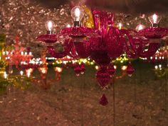 The secret garden by zaha hadid & paola navone