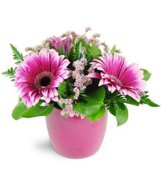 Unbelievably stunning fuchsia hues create a vibrant masterpiece to brighten their day!   Gerbera daisies and statice and arranged in a modern fuchsia ceramic container - perfect to send to a special someone on a special day!