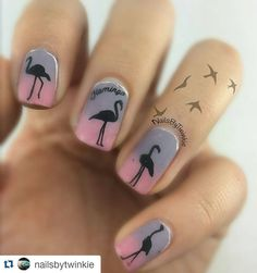 #Repost @nailsbytwinkie with @repostapp  Flamingo Party! Products used LA Colors Last - Infinite LA Colors Gel- Zen  @moyou_london Tropical  15  @mundodeunas  Black  @clearjellystamper  Stamper  #NailArt #NailArtClub #NailArtAddict #NailArtoohlala #NailArtWow #NailArtJunkie #NailArtHeaven #NailArtAddicts #NailArtist #NailArtDesign #NailArtOfInstagram #NailArts #NailArtCult #NailArtDesigns #NailArtSwag #NailArtOfTheDay #NailArtDiary #NailArtAppreciation #NailAartLove #NailArtLover #Uñas…