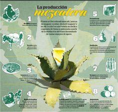 Producción del mezcal, una tradición que hay que preservar!