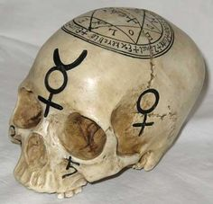 """Made to realistically resemble a human skull, this cold-cast resin statue is adorned with alchemical markings and mystic symbols. Measuring 5 1/2"""" tall, 5"""" wide, and 6 3/4"""" in length, a large seal of"""