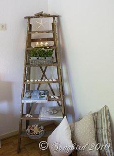 Coastal Ladder3